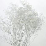 スーパーソフトミニカスミ草 シルバーゴールドラメ