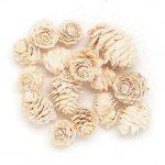 東北花材/カラマツ ホワイト 50個
